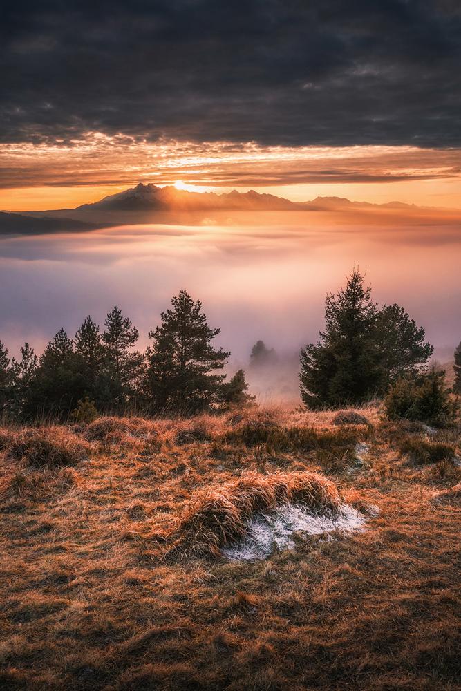 Morze mgieł, Wysoki Wierch, Pieniny.