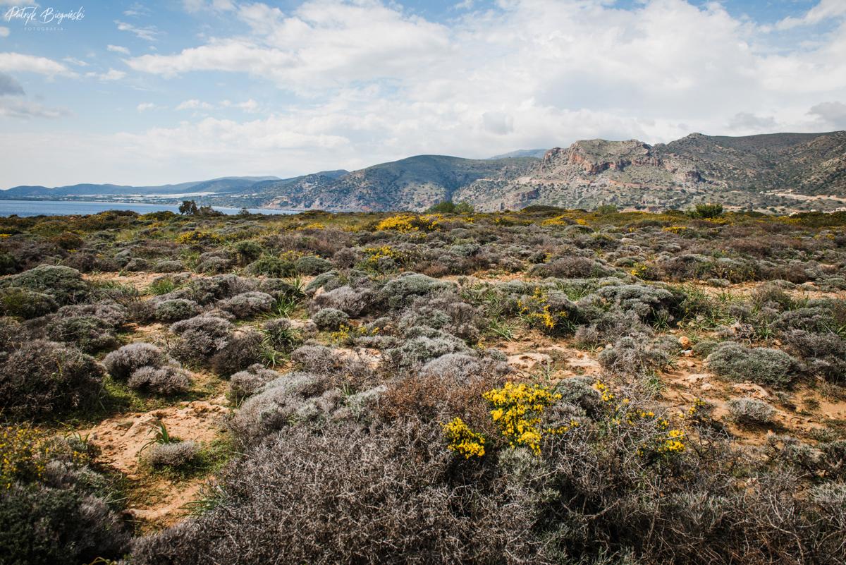 Atrakcje Krety, Kreta co warto zobaczyć, Kreta poza sezonem, Kreta piękne miejsca, Kreta punkty widokowe, Kreta transport publiczny, Chania co warto zobaczyć, Chania w jeden dzień, Chania na weekend, Paleochora, Morze Libijskie