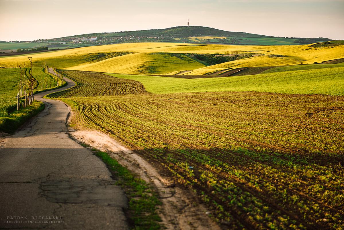 Największe atrakcje czeskich Moraw - fotomiejscówka Morawy Południowe. Pofalowane pola na Morawach, trasa do Chorwacji, samochodem na Bałkany