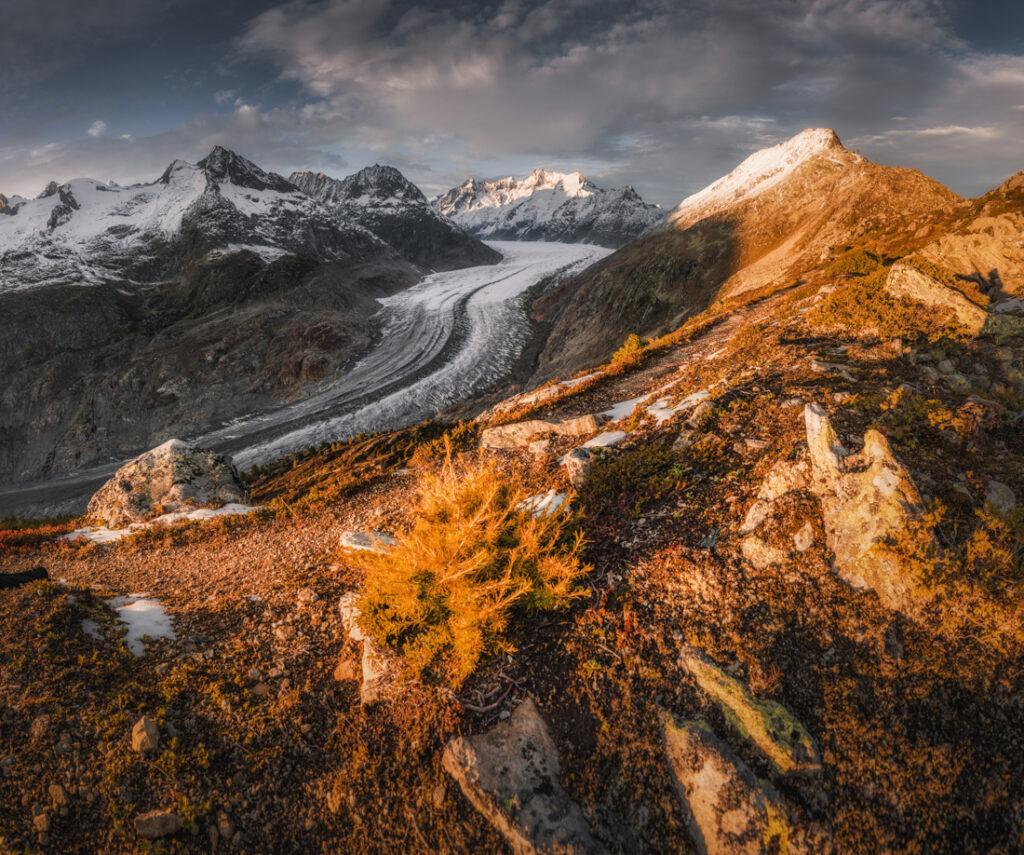 Największy lodowiec Alp - Aletschgletscher. Panorama z grani nad miejscowością Bettmeralp.