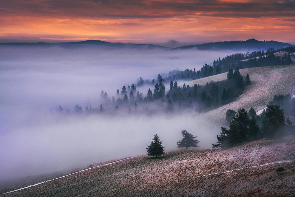 Morze mgieł pod szczytem Wysokiego Wierchu, Pieniny.