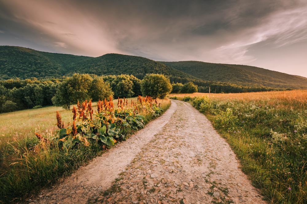 Początkowy etap szlaku na Małą Rawkę, Wielką Rawkę, a także Krzemieniec. Najpiękniejsze szlaki piesze w Bieszczadach.