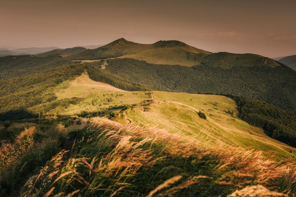 Panorama spod szczytu Smereka z Przełęczą Orłowicza i Połoniną Wetlińską. Co warto zobaczyć w Bieszczadach.
