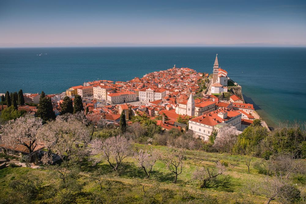 Wybrzeże Słowenii, słoweńskie wybrzeże Adriatyku, słowenia plaże, Słowenia Adriatyk, najpiękniejsze miejsca Słowenii, co warto zobaczyć w Słowenii,  co zobaczyć w Piranie, największe atrakcje Piranu
